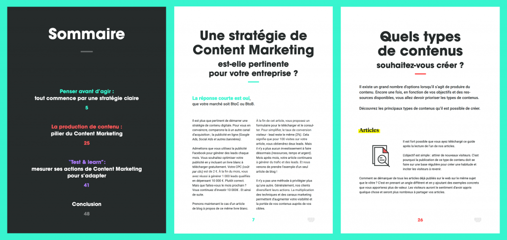 Livre blanc - le guide ultime - example YLW